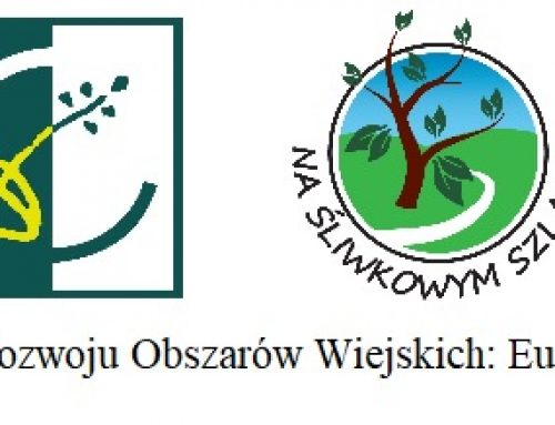 Lokalne partnerstwo na rzecz rozwoju innowacji w turystyce – Klaster turystyczny